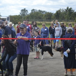 Strut with your Mutt raises much needed funds